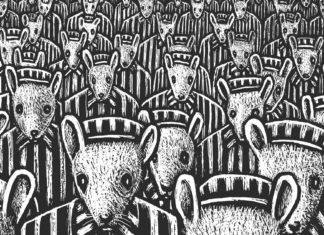 Maus, Art Spiegelman, anmeldelse